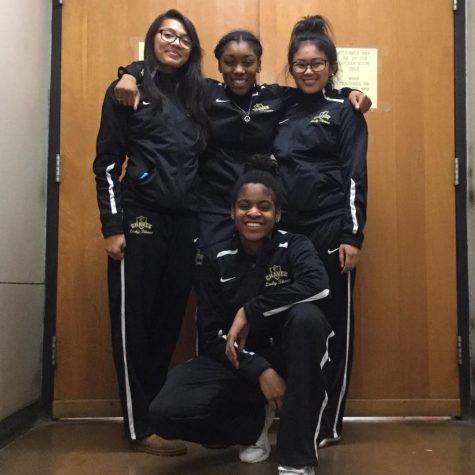 GETTING TO KNOW THE LADY TITANS