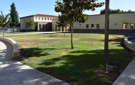The New and Improved Chavez Campus