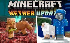 Minecraft Update 1.16 Review
