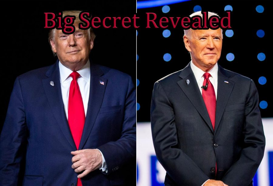 Trump and Biden can both often be seen sporting their BFF lapel Pins.
