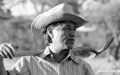 Cesar Chavez and Working Conditions: Then vs Now