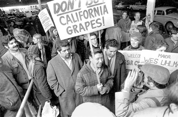 Cesar+Chavez+and+the+Delano+grape+strike